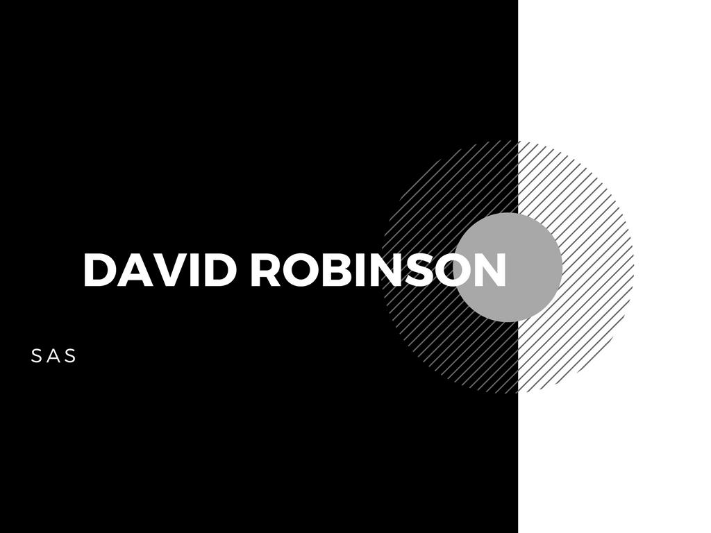 デビッドロビンソン